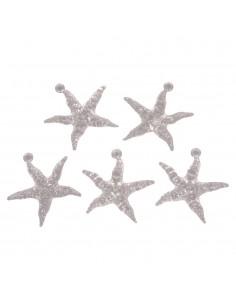 Etoiles de mer Acryliques...