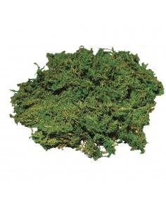 Mousse Nettoyée - 50 gr