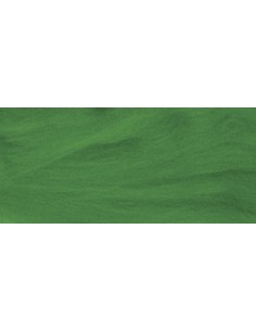 "Laine Vierge Peignée ""Vert..."