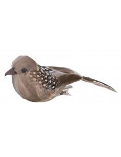 """Oiseaux """"Nature"""" - 10 x 3.5..."""