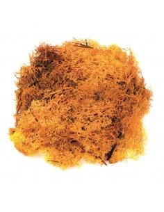 """Mousse """"Orange"""" - 50 gr"""