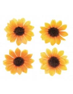 Fleurs de Tournesols - Ø...