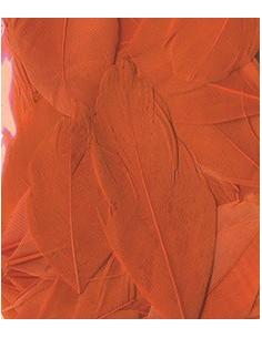 """Plumes """"Orange"""" - 6 cm"""